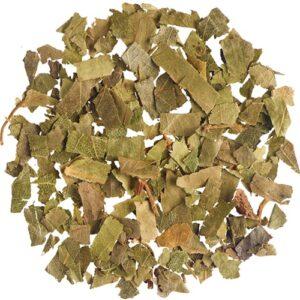 Σημύδα ή Μπετούλα Βότανο Ενεργοποίει Μεταβολισμό - House Of Spices