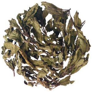 Μέντα Βότανο Αρωματιτκό Φαρμακευτικό - House Of Spices